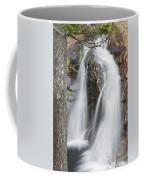 Smalls Falls In Western Maine Coffee Mug