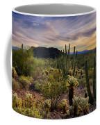 Sonoran Desert Sunset  Coffee Mug