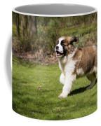 St Bernard Dog Coffee Mug