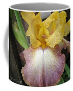 Tall Bearded Iris Named Butterfingers Coffee Mug