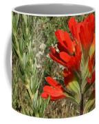 Texas Paintbrush Coffee Mug