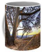 The Reach Coffee Mug
