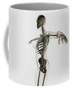 Three Dimensional View Of Female Coffee Mug by Stocktrek Images