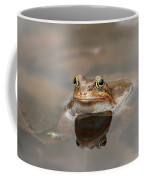 Toad Coffee Mug