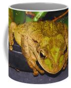 Treefrog Coffee Mug