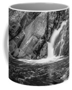 True's Brook Gorge Water Fall Coffee Mug