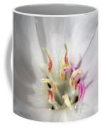 White Godetia From The Satin Mix Coffee Mug