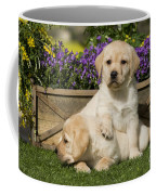 Yellow Labrador Puppies Coffee Mug