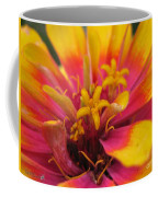 Zinnia Named Swizzle Scarlet And Yellow Coffee Mug