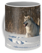 Wolf In Winter Coffee Mug