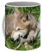 Gray Wolf Pup Coffee Mug
