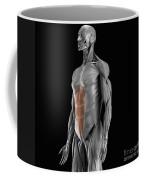Abdominal Muscles Coffee Mug