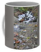 Alaskan Waterfall Coffee Mug