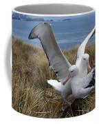 Albatros Royal Diomedea Epomophora Coffee Mug
