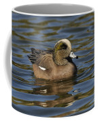 American Widgeon Coffee Mug