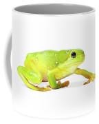 Amphibians On White Coffee Mug