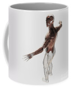Anatomy Of Male Muscles In Upper Body Coffee Mug
