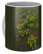 Balsamroot Coffee Mug