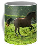 Bay Horse Coffee Mug