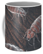 Bed Bugs Cimex Lectularius Coffee Mug