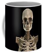 Bones Of The Head And Upper Thorax Coffee Mug