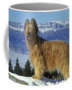 Briard Dog Coffee Mug