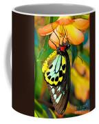 Cairns Birdwing Butterfly Coffee Mug