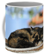 Cat In Hydra Island Coffee Mug