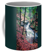 Chesterfield Gorge New Hampshire Coffee Mug by Edward Fielding