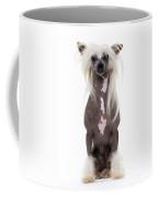Chinese Crested Dog Coffee Mug