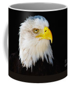 Closeup Portrait Of An American Bald Eagle Coffee Mug