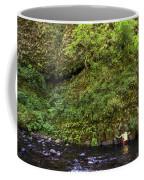 Columbia River Gorge, Oregon, Usa Coffee Mug