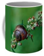 Copse Snail Coffee Mug