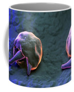 Cryptosporidium Coffee Mug