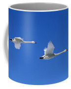 Cygne Chanteur Cygnus Cygnus Coffee Mug