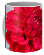 Dahlia Named Ali Oop Coffee Mug