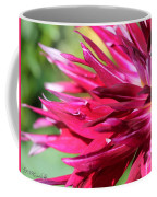 Dahlia Named Normandy Wild Willie Coffee Mug