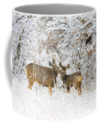 Doe Mule Deer In Snow Coffee Mug