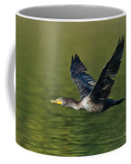 Double Crested Cormorant Coffee Mug