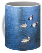 4 Duck Pond Coffee Mug