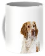 Epagneul Francais Coffee Mug