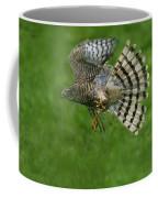 Epervier Deurope Accipiter Nisus Coffee Mug