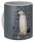 Gentoo Penguin Coffee Mug