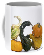 Gourds And Pumpkins Coffee Mug