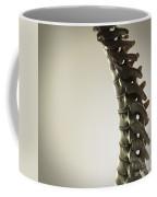 Human Spinal Bones Coffee Mug