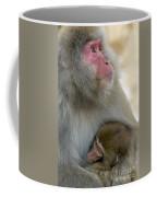 Japanese Macaques Coffee Mug