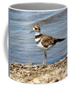 Killdeer Coffee Mug