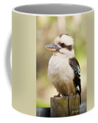 Kookaburra Coffee Mug
