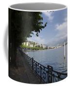Lake Front With Trees Coffee Mug