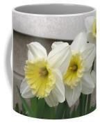 Large-cupped Daffodil Named Ice Follies Coffee Mug